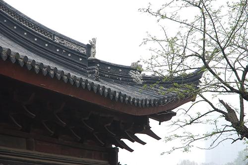 nanjingchina